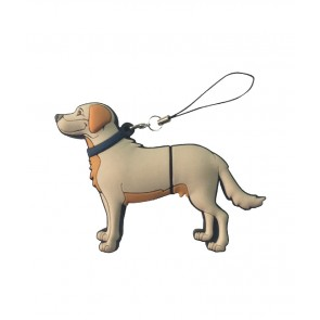 PEN DRIVE LABRADOR/GOLDEN 16 GB